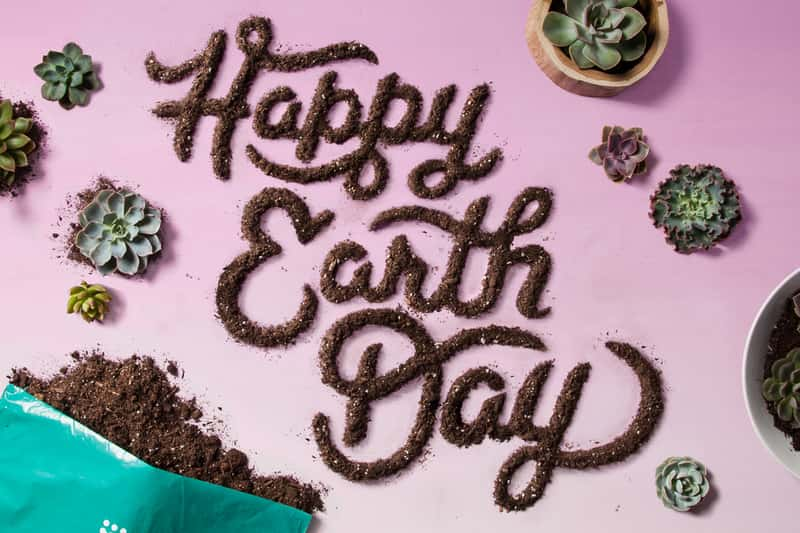 Target Earth Day Social Post